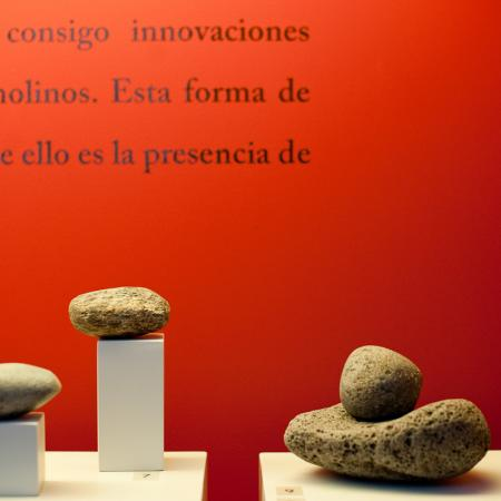 Detalle de la sala: Prehistoria